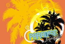 Paradise Vector Theme
