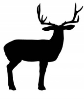 Free Deer Vector Shape