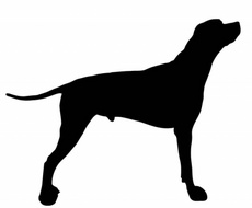 Dog Shape Vector