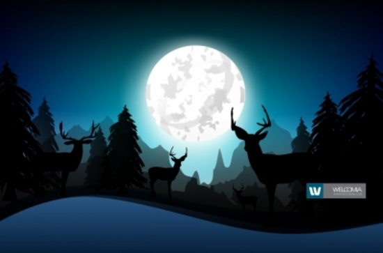 Overnight Hunting Vector Design