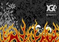 Vector Fire and Floral Ornaments