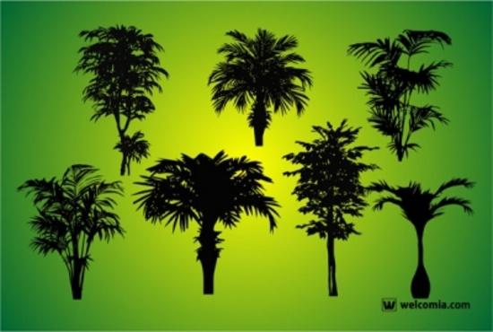 Free Vector Tree Shapes