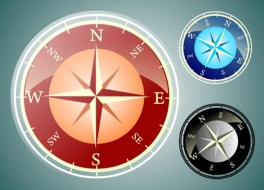 Vector Compass Rose Navigation Instrument