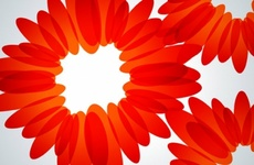 Free Abstract Vector Gerberas