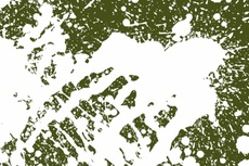 White-Green Vector Splashes