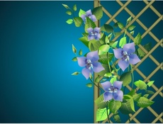 Free Pergola with Flowers Design