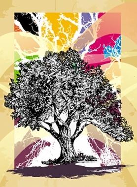 Dream Tree CDR9