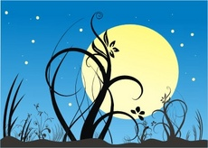 Night Garden Vector Composition