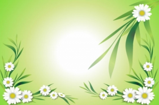 Free Floral Background - Daisies Background
