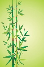 Free Bamboo Background