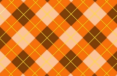 Orange Tartan Backdrip