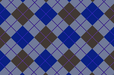 Blue Tartan Backdrop