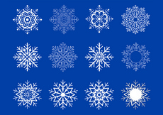12 Snowflake Shapes Vector