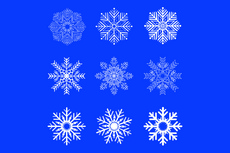 Art Vector Snowflakes